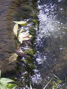 Free Water, Watercourse, Water Resources, Stream Stock Photography - 121058482