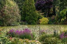 Free Vegetation, Garden, Botanical Garden, Plant Stock Photos - 121556623