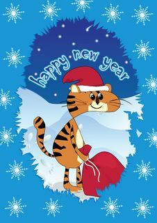 Free Tiger - Santa Claus Whit Gifts Stock Images - 12177814