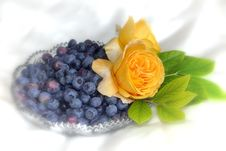 Free Fruit, Berry, Petal, Flower Royalty Free Stock Images - 121707469