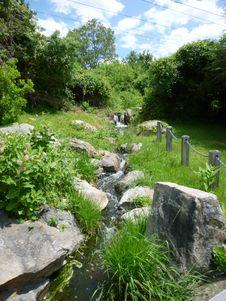 Free Vegetation, Nature Reserve, Garden, Watercourse Royalty Free Stock Photo - 121707985