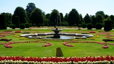 Free Garden, Nature, Botanical Garden, Flora Royalty Free Stock Image - 121708216
