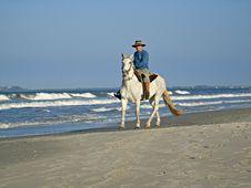 Free Horse, Sea, Horse Like Mammal, Beach Royalty Free Stock Image - 121934126