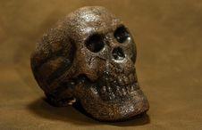 Free Skull Stock Image - 1220691