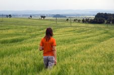 Free Girl Walking In Field Overlooking Forest And Valley Stock Image - 1223961