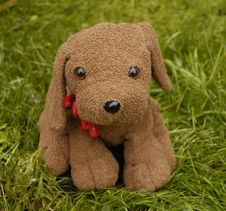 Free Dog Toy Stock Image - 1226651