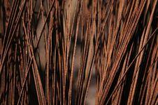 Free Metal Hairs Stock Image - 1226951