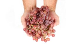 Free Handful Of Red Seedless Grapes Stock Images - 1229004