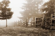 Free Foggy Countryside Stock Image - 1229811