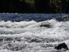 Free Rapid, Water, River, Nature Royalty Free Stock Image - 122108366