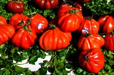 Free Natural Foods, Vegetable, Local Food, Tomato Royalty Free Stock Photo - 122108405