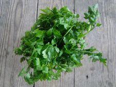 Free Leaf Vegetable, Plant, Herb, Vegetable Royalty Free Stock Images - 122203669