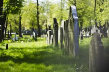 Free Cemetery, Grass, Tree, Grave Stock Image - 122204191