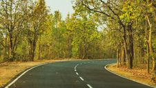 Free Road, Path, Nature, Yellow Royalty Free Stock Images - 122204419
