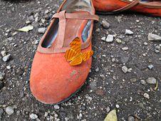 Free Footwear, Shoe, Orange, Outdoor Shoe Stock Photo - 122204800