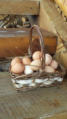 Free Basket, Egg, Ingredient Stock Photo - 122701000