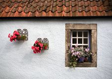 Free Flower, Wall, Window, House Royalty Free Stock Image - 122701386
