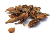 Free Nuts & Seeds, Ingredient, Nut, Spice Stock Image - 122924951