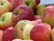 Free Fresh Food On Market Royalty Free Stock Photo - 1233065