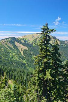 Free Mountain Landscape Royalty Free Stock Photo - 1235545