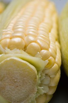 Free Corn On The Cob Stock Images - 1237184
