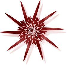 Free Crimson Floral Star Dark Stock Photo - 1239160