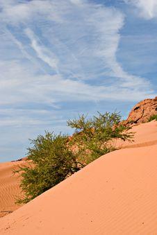 Free Sand Dune Royalty Free Stock Image - 1239806