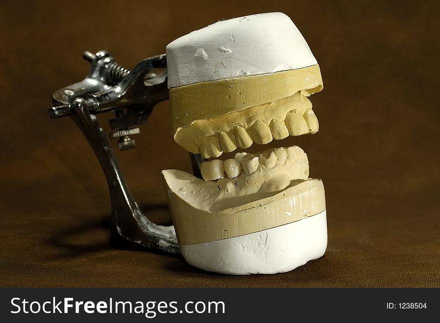Dental Mold - Free Stock Images & Photos - 1238504 | StockFreeImages com