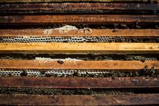 Free Track, Wood, Wood Stain, Material Royalty Free Stock Images - 123125999