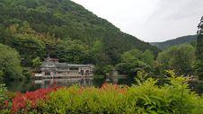Free Nature, Vegetation, Nature Reserve, Lake Stock Photography - 123126152