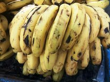 Free Banana, Banana Family, Food, Produce Stock Photos - 123205173