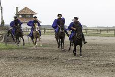 Free Horse, Western Riding, Animal Sports, Endurance Riding Royalty Free Stock Photos - 123205688
