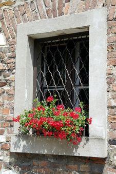 Free Flower, Window, Wall, Facade Stock Photo - 123205920