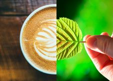 Free Coffee, Drink, Latte, Coffee Cup Royalty Free Stock Images - 123314489