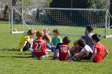 Free Sports, Team, Team Sport, Player Stock Photo - 123314500