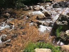 Free Water, Body Of Water, Stream, Vegetation Stock Images - 123400154
