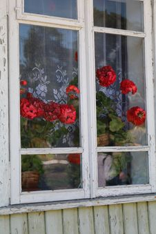 Free Flower, Window, Door, House Royalty Free Stock Photo - 123400305