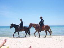 Free Horse, Horse Like Mammal, Equestrianism, Beach Stock Photos - 123470053