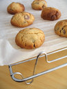 Free Homemade Cookies Stock Images - 1240354