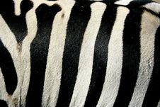 Free Stripes Stock Image - 1242591