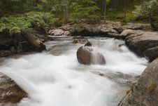 Free River Through Forest Royalty Free Stock Photo - 1243145
