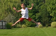 Free Boy On Trampoline Royalty Free Stock Photo - 1243355