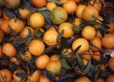 Oranges, Roman Market Stock Photo