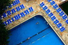 Free Swimming Royalty Free Stock Photos - 1248858