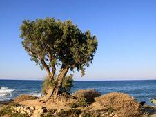 Free Greece Perfect Holiday Stock Photo - 12439110