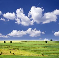 Free Blue Sky And Green Field Royalty Free Stock Images - 12443749