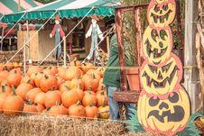 Free Pumpkin, Local Food, Marketplace, Produce Royalty Free Stock Photo - 124419545