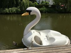 Free Swan Boat, Water, Water Bird, Swan Royalty Free Stock Images - 124419679