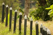 Free Grass, Fence, Tree, Outdoor Structure Stock Photo - 124708760