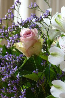 Free Flower, Purple, Plant, Flower Arranging Stock Photos - 124708863